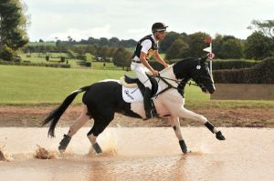 Commander  (by ISF Contango out of Fancy Ruler)- Eventing with Alex Hua Tian