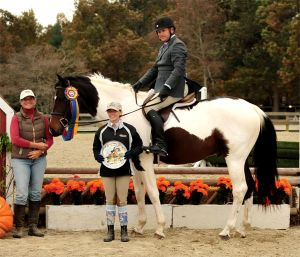 Lord Baltimore - Hunter Champion in 2012 - bred by Logres Farm